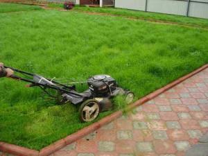 стрижка вашего газона