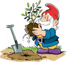 Календарь садовода-огородника по месяцам