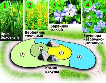 расположение цветов на круглой клумбе