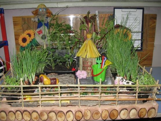 Фото огород на окне в детском саду оформление своими руками